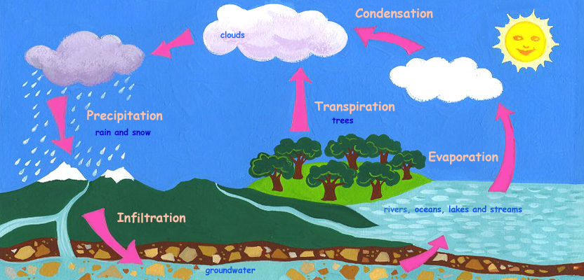 Water Cycle Lesson Plans Quality Extensionusuedu Picture