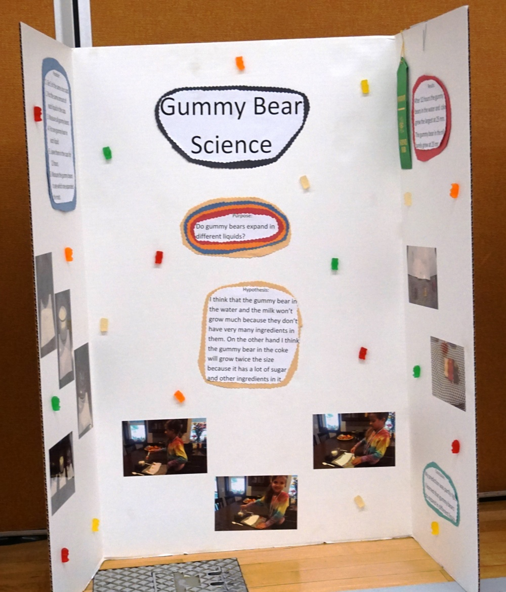 Chester Elementary Science Fair
