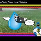 Lawn Watering Video