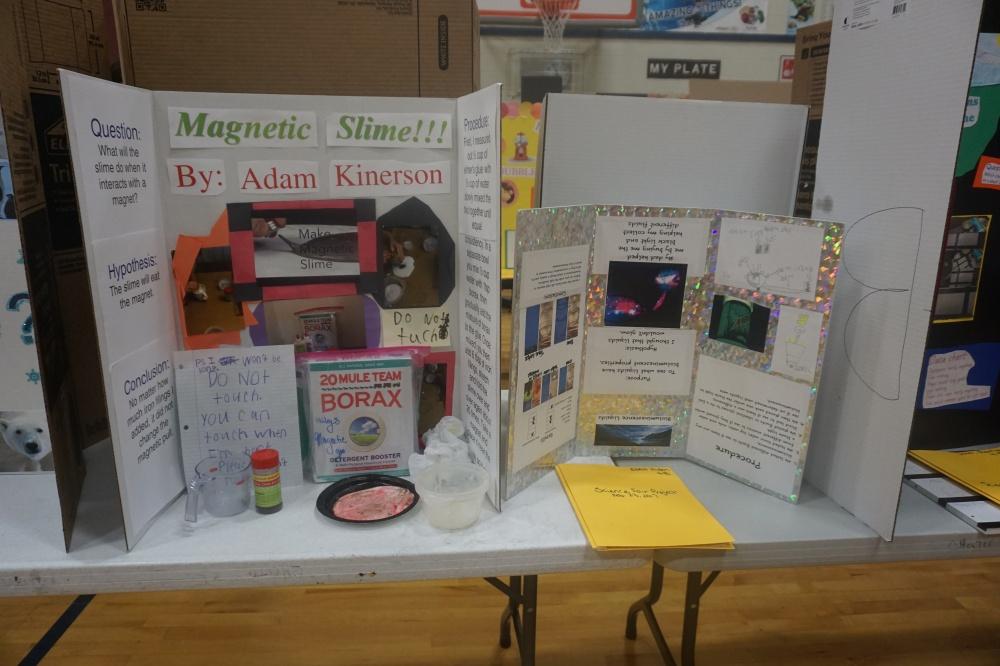 McDonald Elementary Science Fair